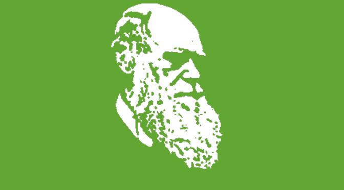 Warum Darwins Evolutionstheorie richtig ist und sie die Welt doch nicht erklären kann